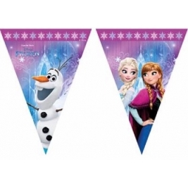 unique Procos Disney Frozen Northern Lights Plastic Flag Banner Bunting - 86921 Final Check